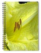 Flower Garden 33 Spiral Notebook