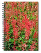 Flower Garden 34 Spiral Notebook