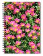 Flower Garden 36 Spiral Notebook