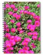 Flower Garden 38 Spiral Notebook