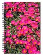 Flower Garden 39 Spiral Notebook