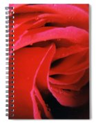 Flower Garden 41 Spiral Notebook
