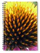 Flower Garden 49 Spiral Notebook