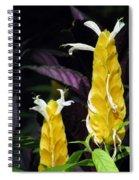 Flower Garden 51 Spiral Notebook