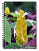 Flower Garden 52 Spiral Notebook