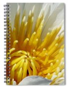 Flower Garden 69 Spiral Notebook