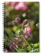 Flower-geranium Buds Spiral Notebook