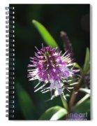 Flower-hebe  Spiral Notebook