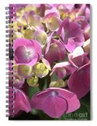 Flower-hydrangea Pink Spiral Notebook