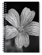 Flower In Black And White Spiral Notebook