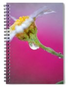 Flower In Purple Spiral Notebook