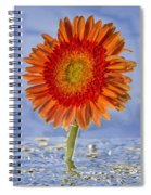 Flower In Water Spiral Notebook