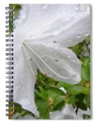 Flower Laced With Rain Drops Spiral Notebook