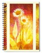 Flower Love Triptic Spiral Notebook