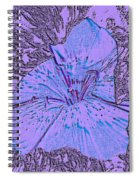 Flower Of Purple Spiral Notebook