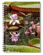 Flower Of Victoria Cruziana Spiral Notebook