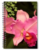 Flower - Orchid -  Cattleya - Magenta Splendor Spiral Notebook
