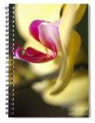 Flower-orchid-yellow Spiral Notebook