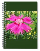 Flower Pink Spiral Notebook