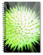 Flower Power 1361 Spiral Notebook