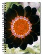 Flower Power 1425 Spiral Notebook