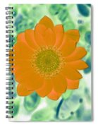Flower Power 1433 Spiral Notebook