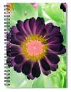 Flower Power 1435 Spiral Notebook
