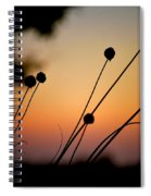 Flower Silhouettes I Spiral Notebook