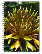 Flower - Sultry Dahlia - Luther Fine Art Spiral Notebook