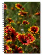Texas Indian Blanket -  Luther Fine Art Spiral Notebook
