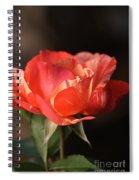 Flower-tri Toned-rose Spiral Notebook