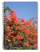flower wall in Madagascar Spiral Notebook