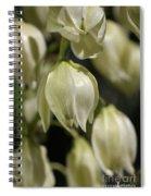 Flower-yacca-bloom Spiral Notebook