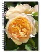 Flower-yellow Roses Spiral Notebook