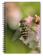 Flowerfly Pollinating Blueberry Buds Spiral Notebook