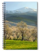 Flowering Almond At The Mountains Spiral Notebook
