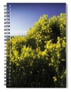 Flowering Bush Spiral Notebook