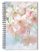 Flowering Cherry Tree Blossoms Spiral Notebook
