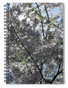 Flowering Cherry - White Spiral Notebook