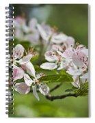 Flowering Crabapple 2 Spiral Notebook