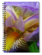 Flowering Iris Spiral Notebook