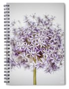 Flowering Onion Flower Spiral Notebook