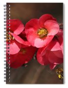 Flowering Quince With Bee Spiral Notebook