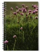 Flowers Above The Beach Spiral Notebook