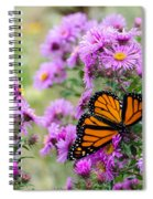 Flowers And Butterfly  Spiral Notebook