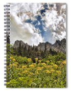 Flowers And Mountains And Sky...oh My Spiral Notebook