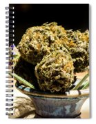 Organic Flowers And Vase Spiral Notebook