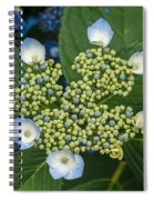Flowers At Soos Creek Botanical Garden II Spiral Notebook