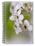 Flowers - Blossoms Spiral Notebook