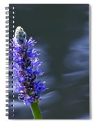 Flowers By The Water Spiral Notebook
